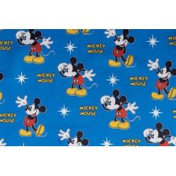 Глобус Mickey 2